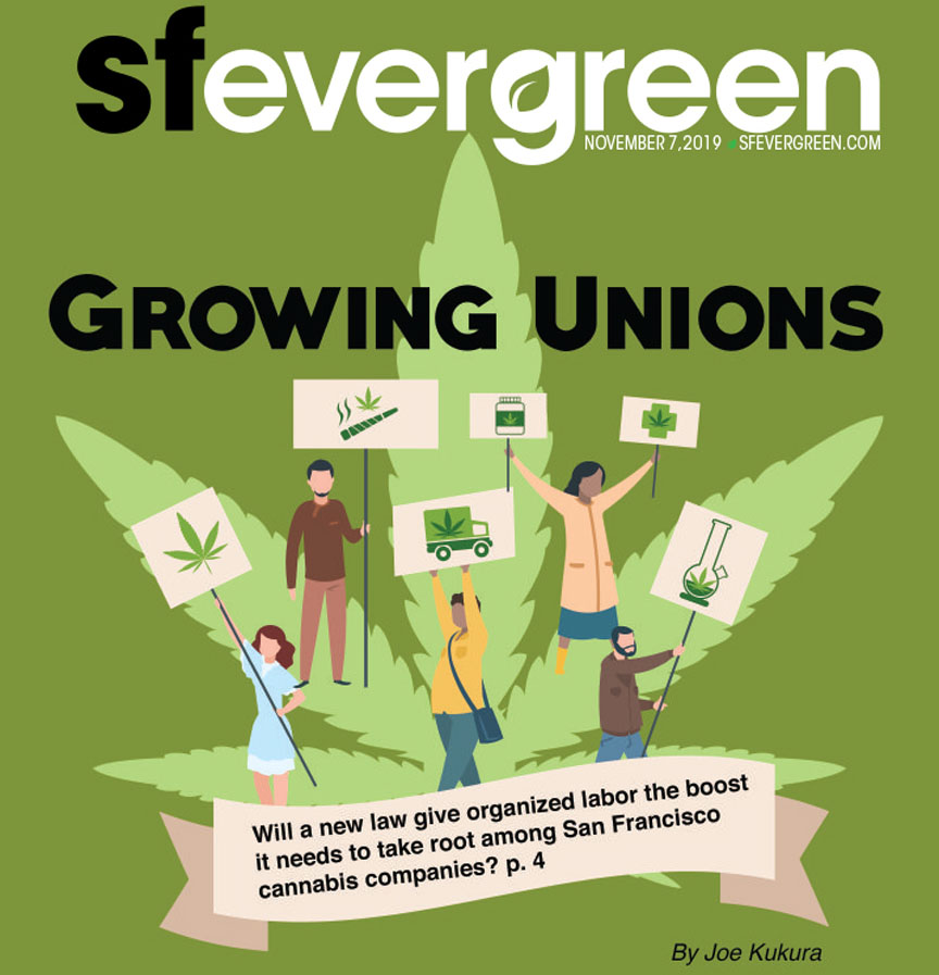Evergreen Cover 55